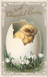 A Cheerful Easter - Chick in a Egg
