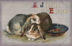 A JOYOUS EASTER - Two Bunnies, Bowl