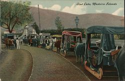 Sled Cabs, Madeira Islands