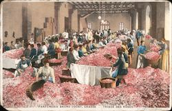 Rose-sorting room at Bruno Court perfume factory