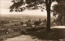 View from Pine Walk Postcard