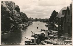 River Thames from Oxford Bridge Postcard