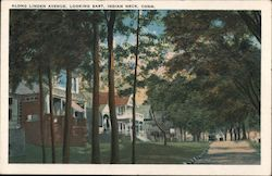 Along Linden Avenue, Looking East Postcard