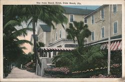 The Palm Beach Hotel Postcard