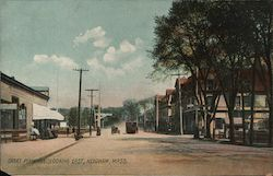 Great Plain Avenue, Looking East Postcard