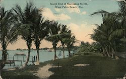 South End of Narcissus Street Postcard