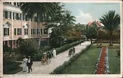 Walk and Gardens, The Royal Poinciana