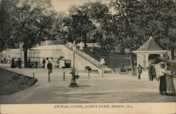 Animal Cages, Lord's Park Postcard