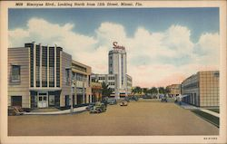 Biscayne Blvd., looking North from 12th Street, Miami, Fla. Postcard