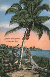 Honey, Come Down! We'se Waitin Fo You in Florida Postcard