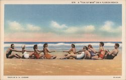 "A ""Tug of war"" on a Florida beach Postcard"