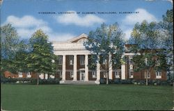 Gymnasium, University of Alabama, Tuscaloosa, Alabama Postcard