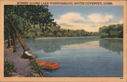 Scenes Along Lake Wangumbaug Postcard
