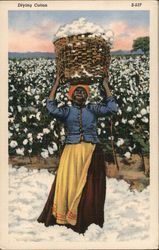 Drying Cotton - Woman with Basket of Cotton on Her Head