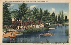 Crowd watching Wild Duck Show, Lost Lake, Coral Gables, Fla. Postcard
