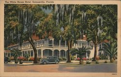 The White House Hotel Postcard