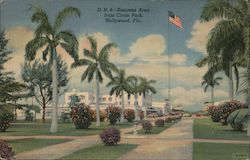 Business Area from Circle Park, Hollywood, Fla. Postcard