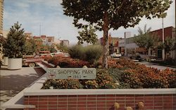 Flower Beds - Shopping Park