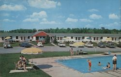 The Bird's Net Motel Postcard