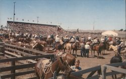 Elks' Annual Rodeo