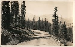 Monarch Pass Postcard