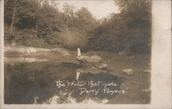 The water that made Derry famous. Postcard