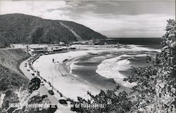 Panoramic View of the Beach Postcard