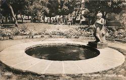Typical Peeing Boy Fountain Postcard
