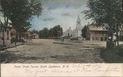 Forest Street Square Postcard