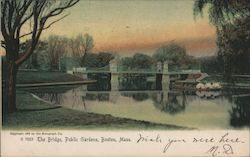 The Bridge, Public Gardens