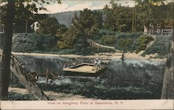 View on Allegheny River Postcard