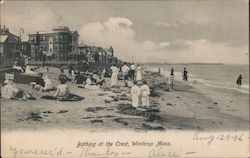 Bathing at the Crest Postcard