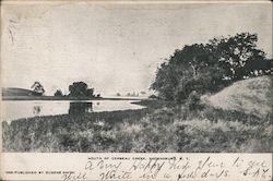 Mouth of Cerbeau Creek Postcard