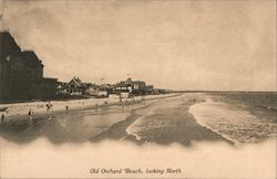 Old Orchard Beach, looking North Postcard