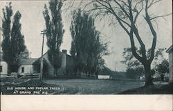 Old House and Poplar Treest Postcard