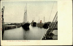 In The Slip At Port Tampa Postcard
