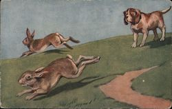 A Dog Chasing Two Rabbits Postcard