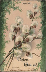 Several Stems of Flowers Postcard