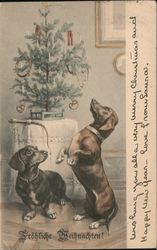 Two Dogs with a Christmas Tree Postcard