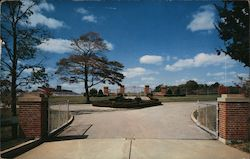 Athletic Area - Allegheny College Postcard