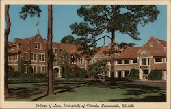 College of Law, University of Florida Postcard