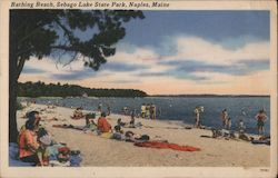 Bathing Beach, Sebago Lake State Park Postcard