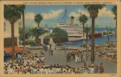 Crowds Greeting Daily Arrival of Steamer of Avalon Postcard