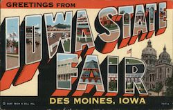 Greetings From Iowa State Fair Postcard