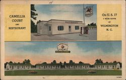 Camellia Court and Restaurant Postcard