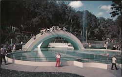 Rainbow Bridge adorns the main entrance to Tampa's Fairyland Postcard