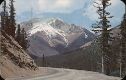 Vista on the eastern slope of Monarch Pass Postcard