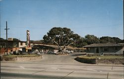 Californian Motel Postcard