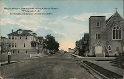 Maple Avenue, Looking Toward the Atlantic Ocean Postcard