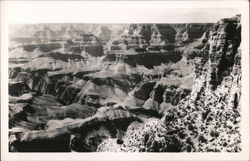 Grand Canyon View Postcard